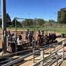 Sacramento Softball Complex - 13 Photos - Amateur Sports ...