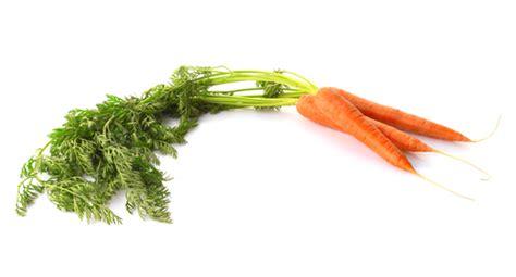 comment cuisiner les carottes astuce du chef cyril lignac comment cuisiner les carottes fanes