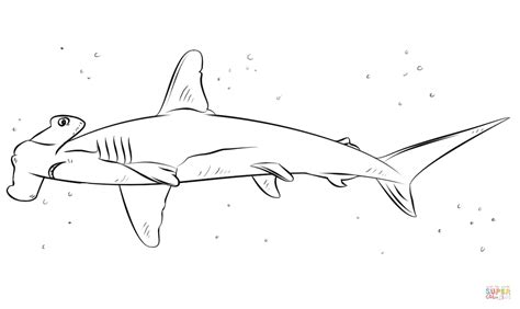 Hammerhead Shark Clipart Colouring Page
