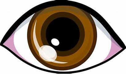 Clipart Brown Eye Vision Clip Eyes Symbol