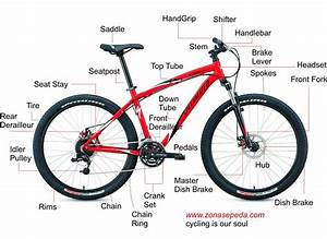 Bicycle Anatomy Diagram  Bicycle  Free Image About Wiring