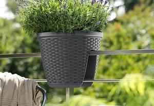 pflanzgefasse fur den aussenbereich tipps von obi With französischer balkon mit pflanzgefäße für den garten