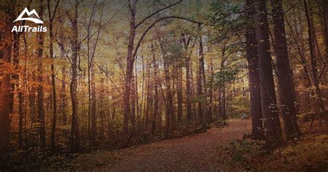 trails   gilbert hills state forest alltrailscom