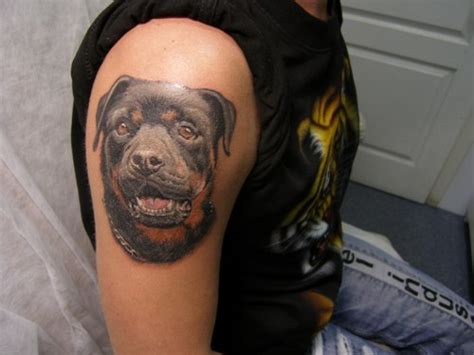 the 14 coolest rottweiler designs in the world