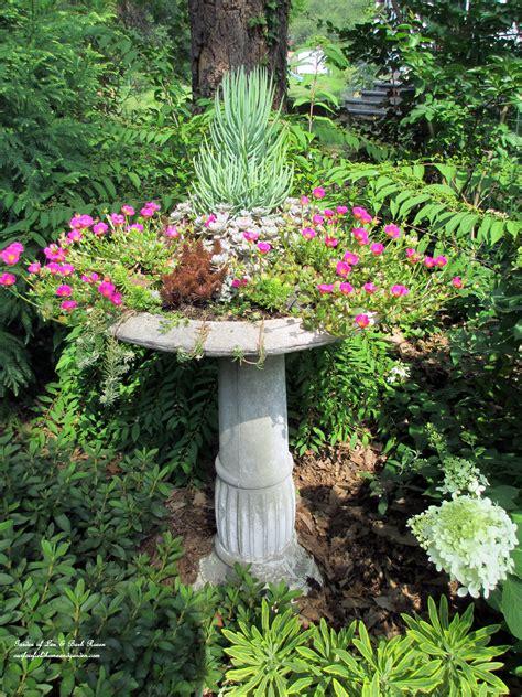 Garten Deko Len by Purslane Blooming In The Succulent Bird Bath Garden Of