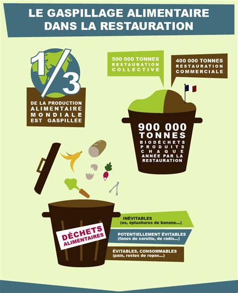 que faire contre les moucherons dans la cuisine comment prendre conscience du gaspillage en restauration