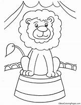 Coloring Lion Pages Unicycle Drawing Template Printable Phonics Colouring Ganesha sketch template