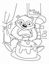 Raccoon Coloring Pages Racoon Birthday Drawing Celebrating Printable Library Clipart Popular Clip Getdrawings Coloringhome sketch template