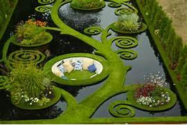 Water Garden This Water