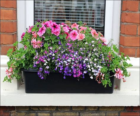 Outside Window Sill Planter by Beautiful House Do It Yourself