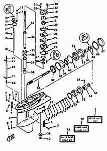 Diagram Of 1969 9rl69s Johnson Outboard Lower Unit Group