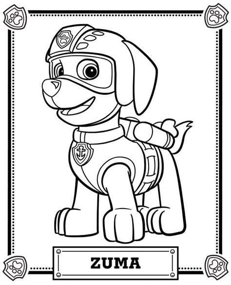 Coloring Zuma by 68 Best Images About Paw Patrol On