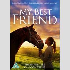 My Best Friend (horse Movie) New Dvd Ebay