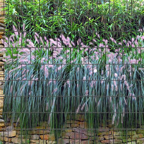 Sichtschutz Garten Glas Bedruckt by Graswand Bedruckter Sichtschutz Streifen Individueller