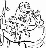 Monkey Coloring Colouring Popular Vervet sketch template