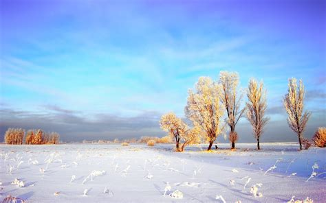Winter Landscape Wallpaper Full Hd Pixelstalknet