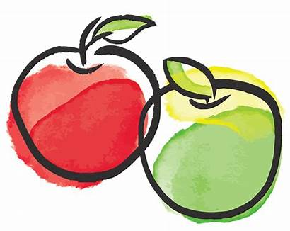 Apple Illustration Fruit Clipart Apples Facts Interesting