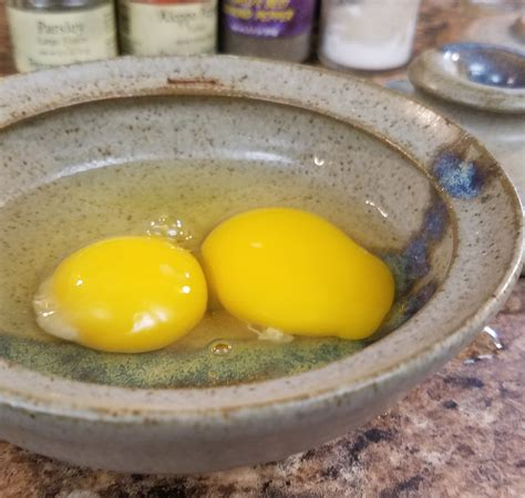 egg microwave cooker cook