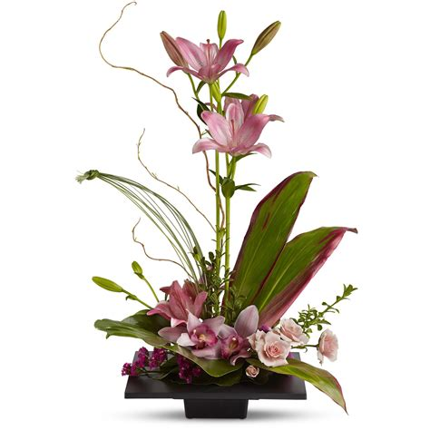 how to get orchids to bloom imagination blooms w cymbidium orchids by teleflora t256 1a in saint paul mn st paul floral