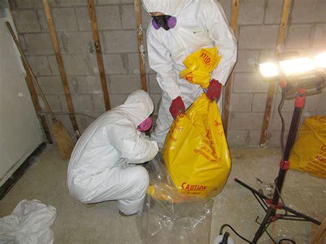 asbestos removal service kingston asbestos abatement