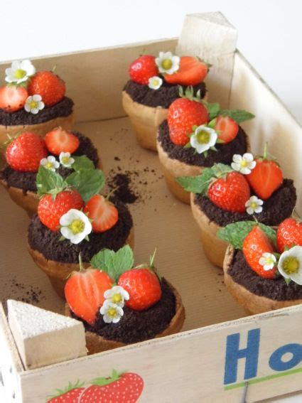 strawberry  dark chocolate plant pots rachel