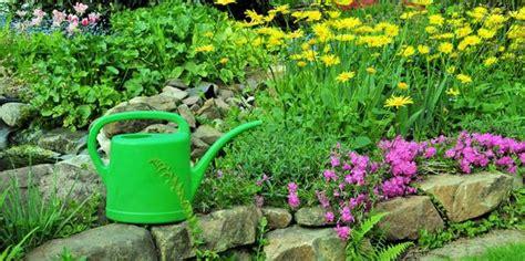 Die Schönsten Blumen Für Den Garten by Die Sch 246 Nsten Stauden F 252 R Den Garten