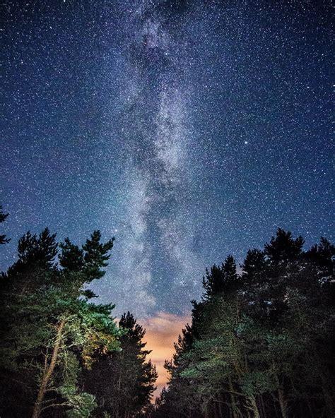 Rothiemurchus Forest Badenoch Strathspey Scotland