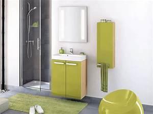 Le Bon Coin Meuble De Salle De Bain : meuble salle de bain le bon coin ~ Teatrodelosmanantiales.com Idées de Décoration
