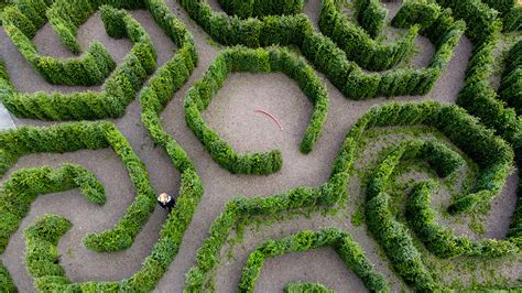 dizzying labyrinth  host  years party