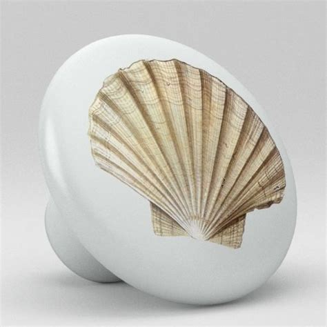 Seashell Cabinet Knobs And Pulls by Sea Shell Ceramic Knobs Pulls Kitchen Drawer Cabinet