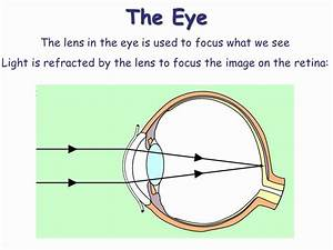 Gcse Physics P3 Revision  Mirrors And Lenses