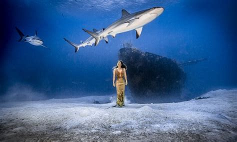 karina olianis underwater fashion shoot  bahamas