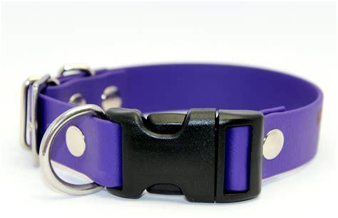 Kaklasiksna sunim Combo I, platums 2.5 cm - Combo I - Suņu kaklasiksnas, iemaukti un pavadas no ...