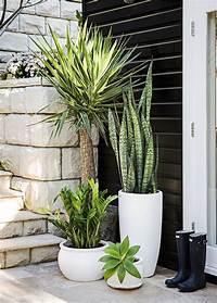 best patio plants design ideas Best Patio Furniture and Ideas Images For You #Patio Furniture Ideas #HomeDecor | Pots & Plants ...