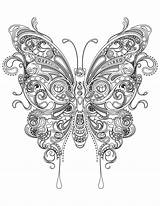 Coloring Butterfly Adults Adult sketch template