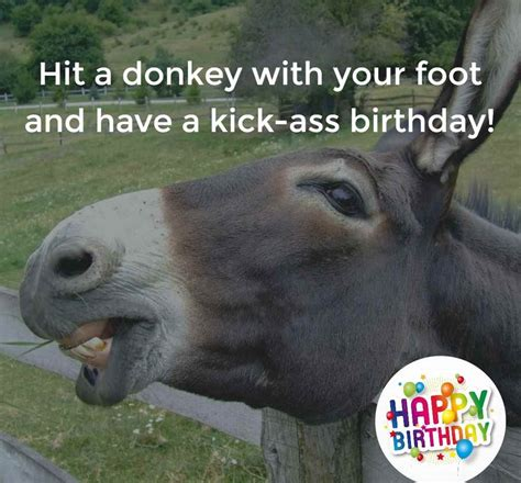 funny birthday wishes messages images messages