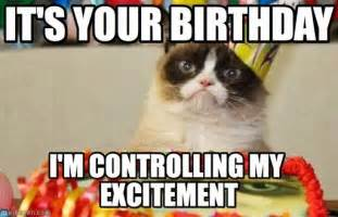 cat happy birthday meme grumpy cat birthday meme http www memegen meme