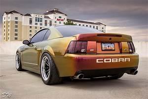 2003/04 Ford Mustang SVT Cobra   Mustang, Ford mustang, Ford