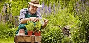 Blumen Im Urlaub Bewässern :  ~ Watch28wear.com Haus und Dekorationen