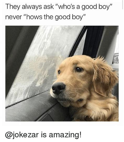 Good Boy Memes - 25 best memes about the good boy the good boy memes