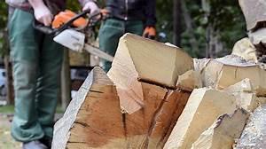 Skulpturen Aus Holz : ausstellung skulpturen aus holz und metall freitag 26 9 um 14 uhr ~ Frokenaadalensverden.com Haus und Dekorationen
