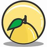 Icon Lemon Nutrition Icons Splash Fruit Gambar