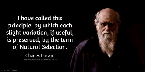charles darwin quotes iperceptive