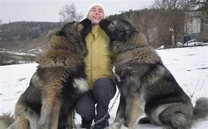 10 Unbelievable Facts About Russia That You Didn't Know ...