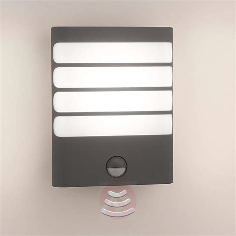 philips raccoon led outdoor wall light anthracite lights ie