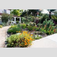 Best 25+ California Garden Ideas On Pinterest Drought