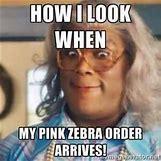 Pink Zebra Sprinkles Business Cards   300 x 300 jpeg 16kB