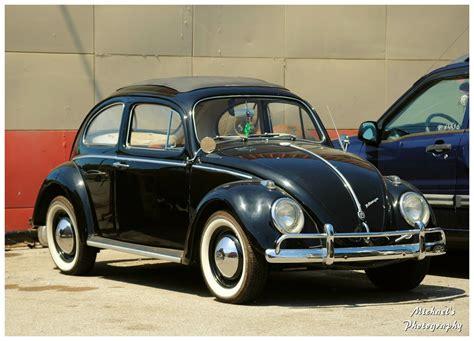 old volkswagen vintage vw beetles tubezzz photos