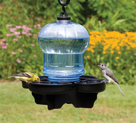 bird water feeder duncraft bird water cooler