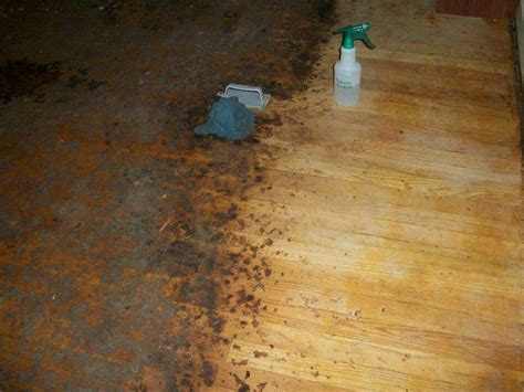 remove years worth  carpet glue  ground  dirt